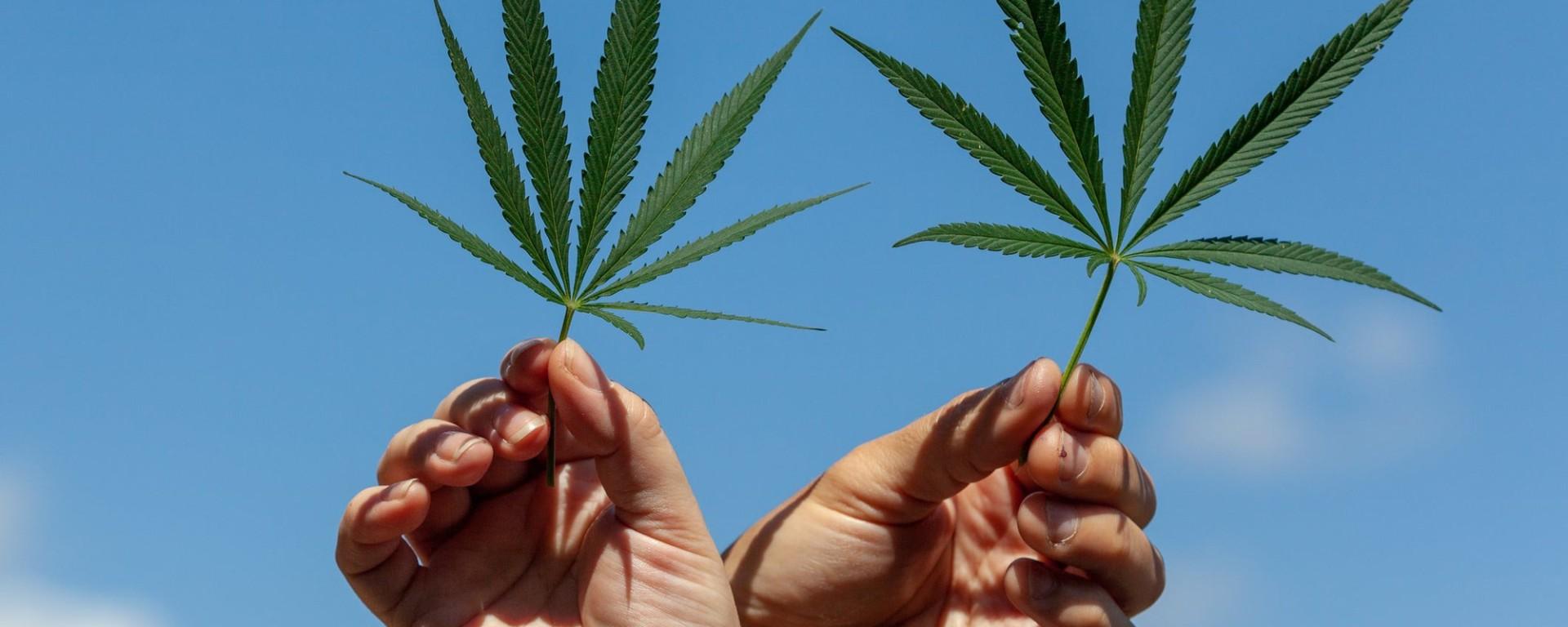 HeyHelloHigh Cannabis Content for Women | Image via Getty