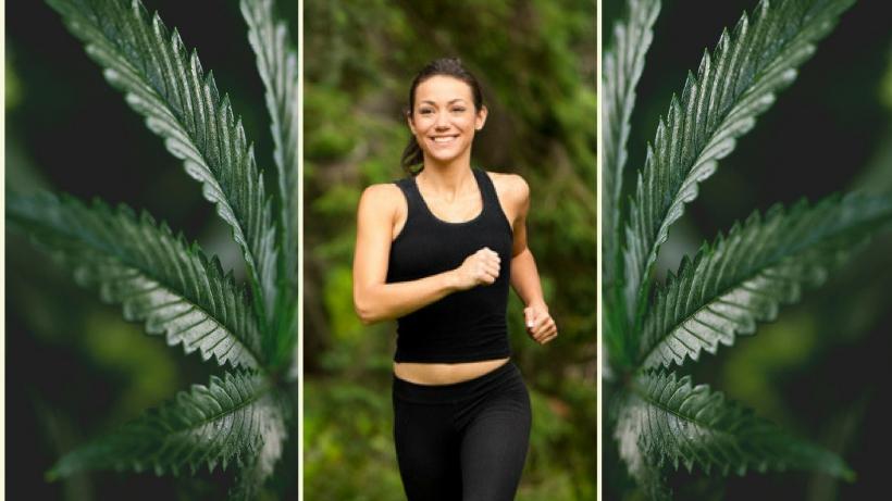 heyhellohigh-cannabis-and-cardio-smoke-workout