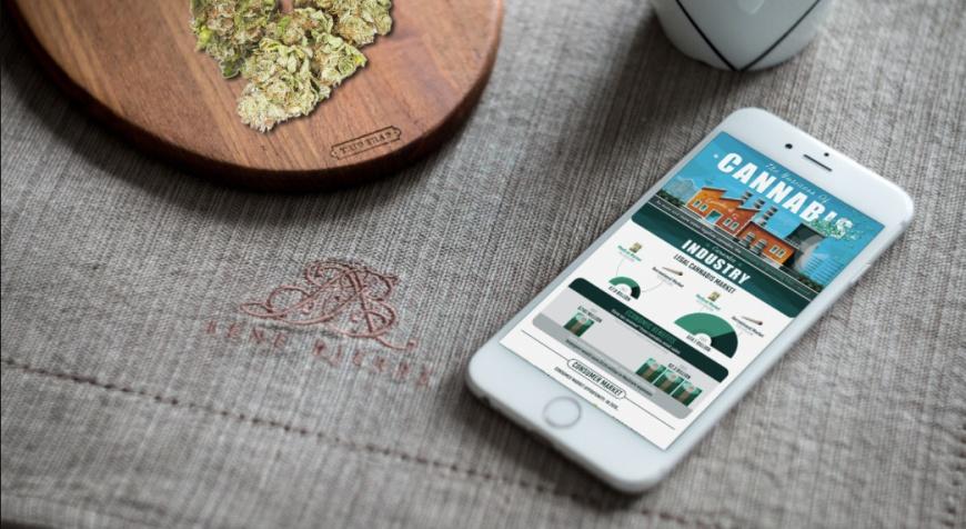 Business of Cannabis Infographic 2018 - HeyHelloHigh